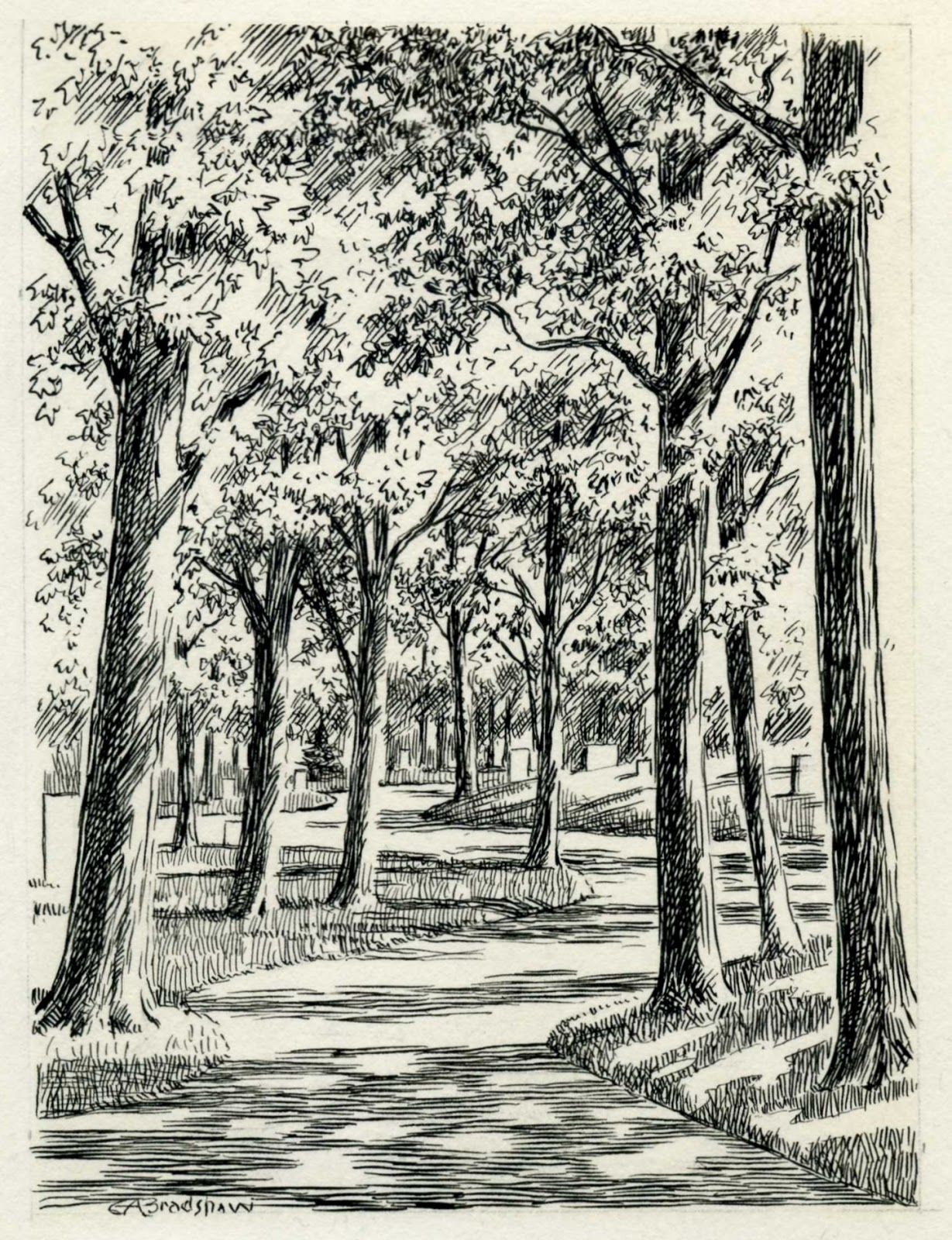 Pen And Ink Illustrations : Riverview cemetery the pen and ink drawings of george a