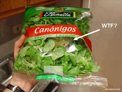 Salada com sapo