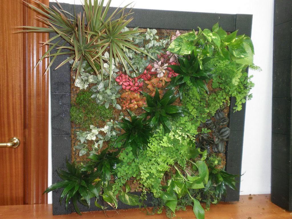 curso jardines verticales
