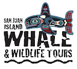 San Juan Island Whale &amp; Wildlife Tours