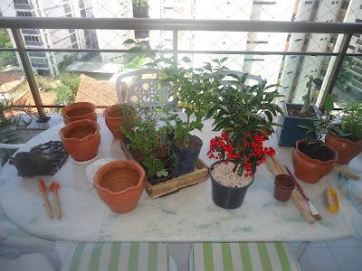 HORTA NA VARANDA; jardinagem