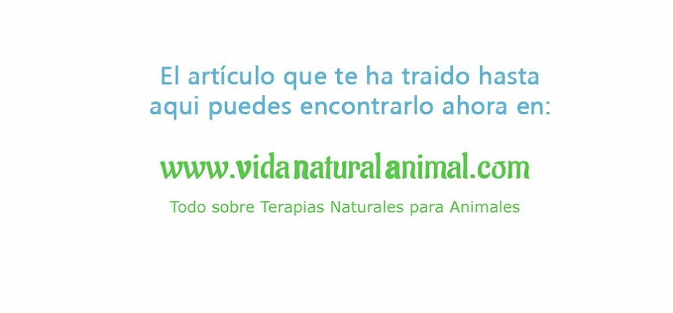 Veternatur - salud natural animal