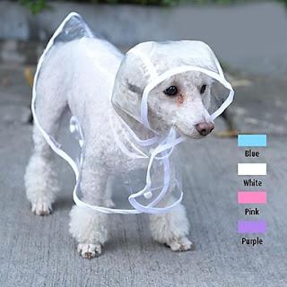 accesorios para perros, accesorios mascotas, abrigos para perros, disfraces para perros