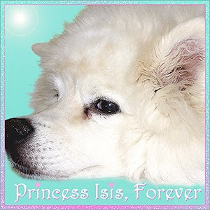 Fly Free Princess Isis