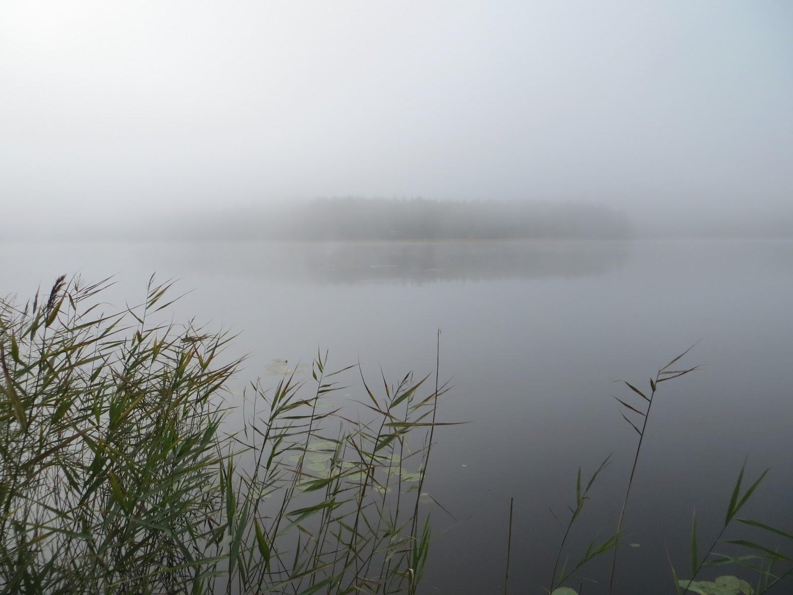 mist at lake