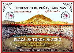Feria Taurina