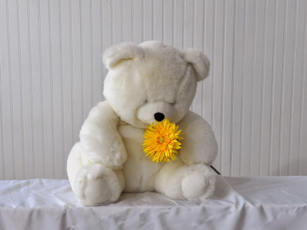 White-teddy-with-yellow-flower-HD-picture-1024x768.jpg