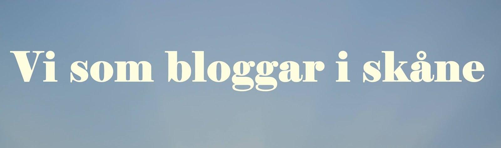 Vi som bloggar i skåne