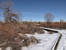 Hike Colorado Cherry Creek Valley Ecological Park