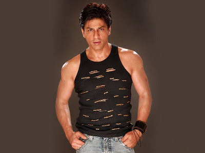 Shahrukh Khan Normal Resolution HD Wallpaper 9