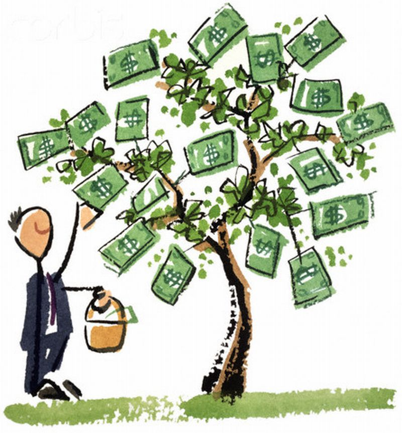 money on the tree