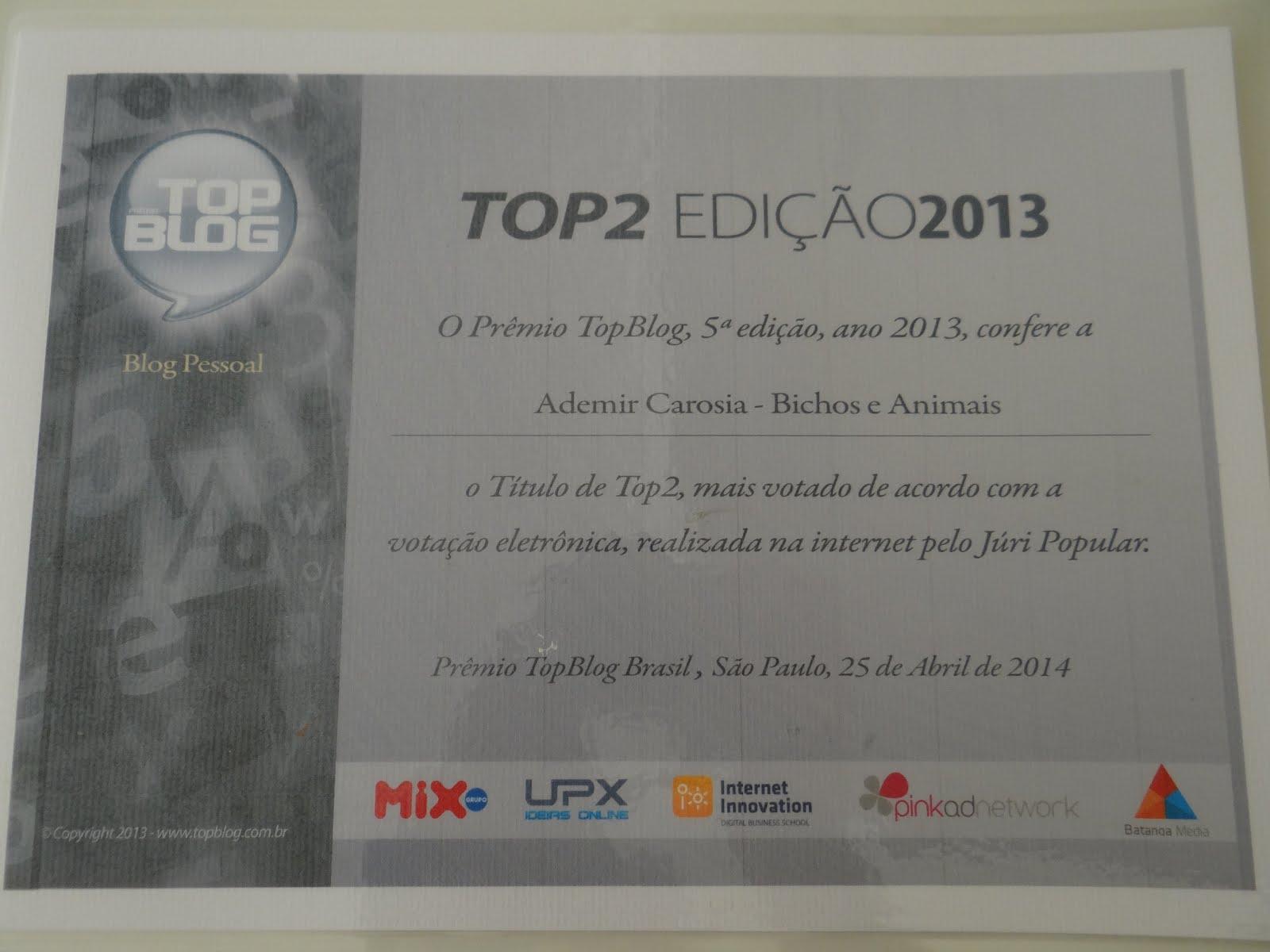 VICE-CAMPEÃO - 2013