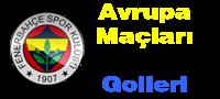 Fenerbahçe'nin hazırlık, Şampiyonlar Ligi ve Süper Kupa maçları ve golleri burada