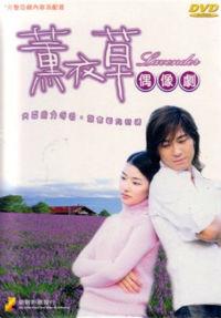 Lavender / 薰衣草