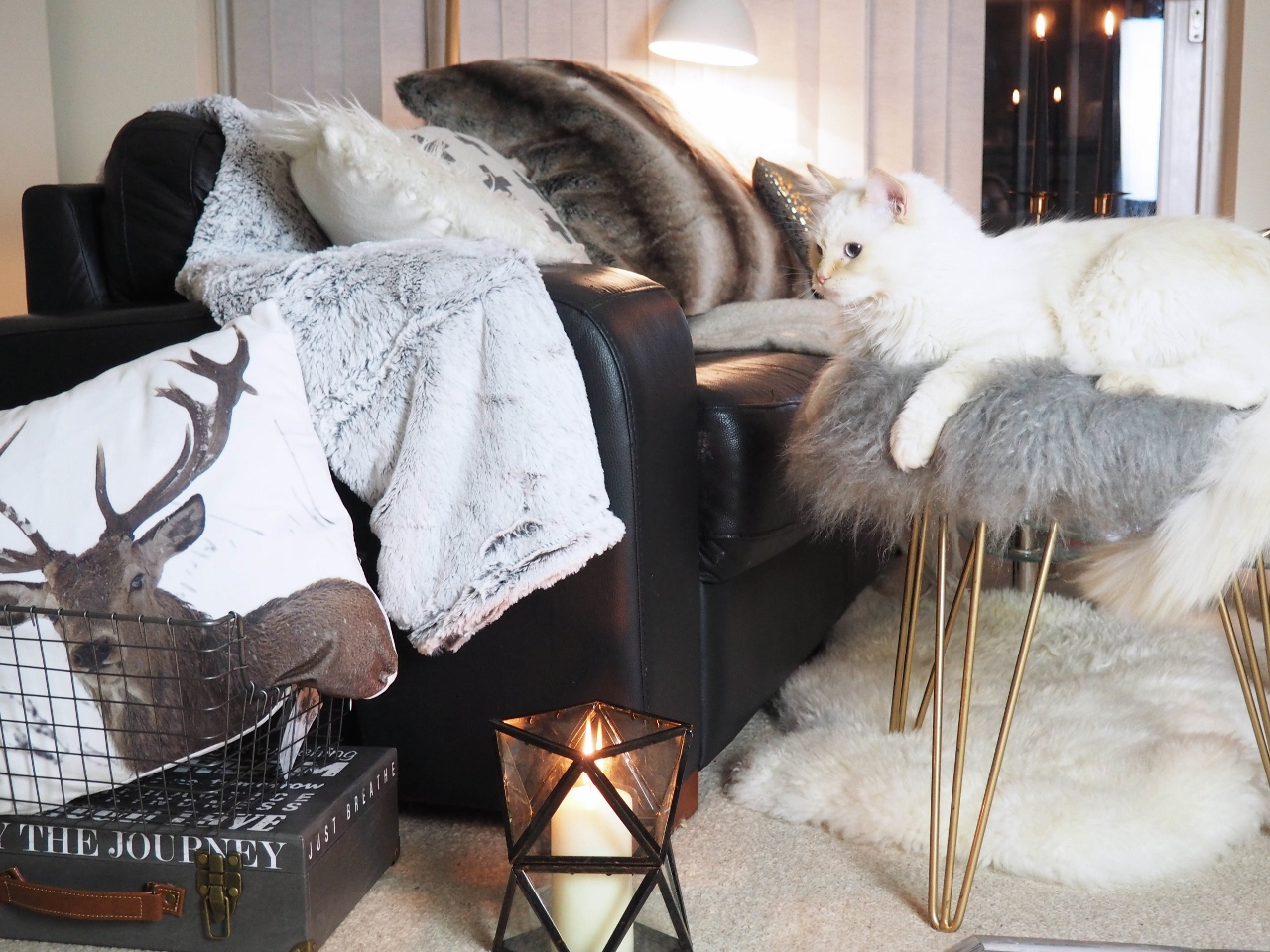 Few Hints And Tips How To Create Your Snuggle Area Just Perfect One
