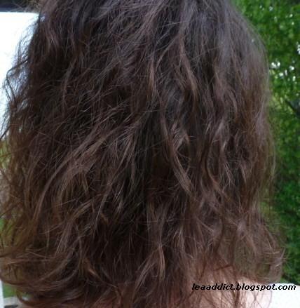 aprs shampooing avant coloration aprs coloration - Coloration Logona Chataigne