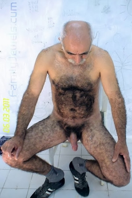 older gay - hairy daddy