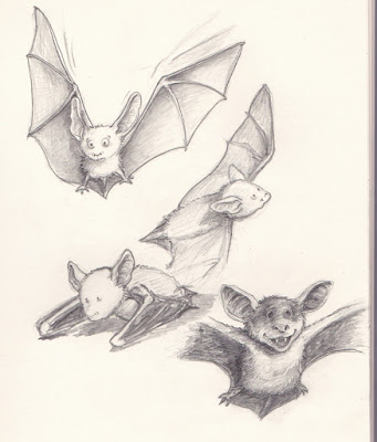 Kinderbuchillustration, Fledermäuse, Skizzen, Angela Kommoß