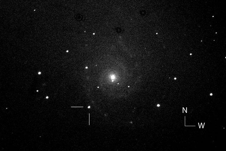 """Một trong những hình ảnh đầu tiên về siêu tân tinh vừa được phát hiện trong thiên hà M74, hình ảnh được thực hiện bởi Dự án Tìm kiếm Siêu tân tinh nước Ý (the Italian Supernova Search Project). Thiên thể này nằm ở 93"""" đông và 135"""" nam so với trung tâm của thiên hà. Tác giả : Fabio Martinelli."""