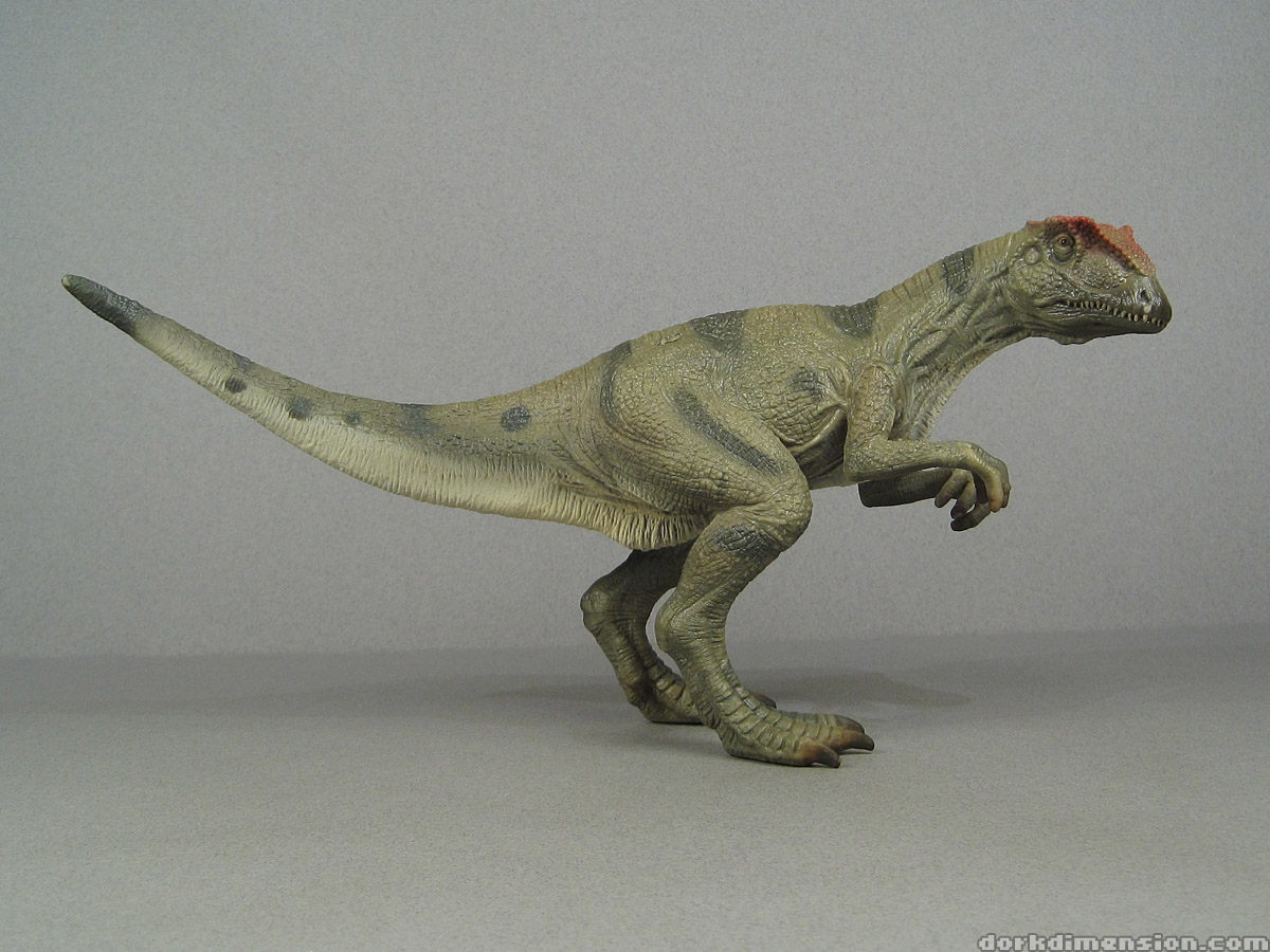 Dork Dimension: Toy Review: Schleich Allosaurus vs. Papo ... Walking With Dinosaurs Allosaurus Toy