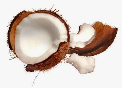 verdades y mentiras del aceite de coco