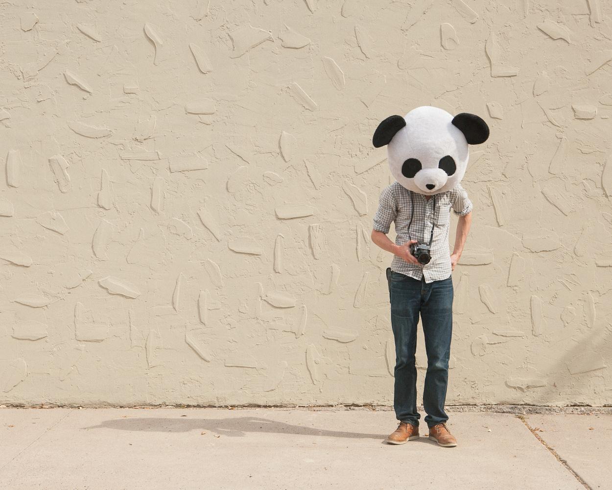 ©Cody Bratt - Animalia Obscura. Fotografía | Photography