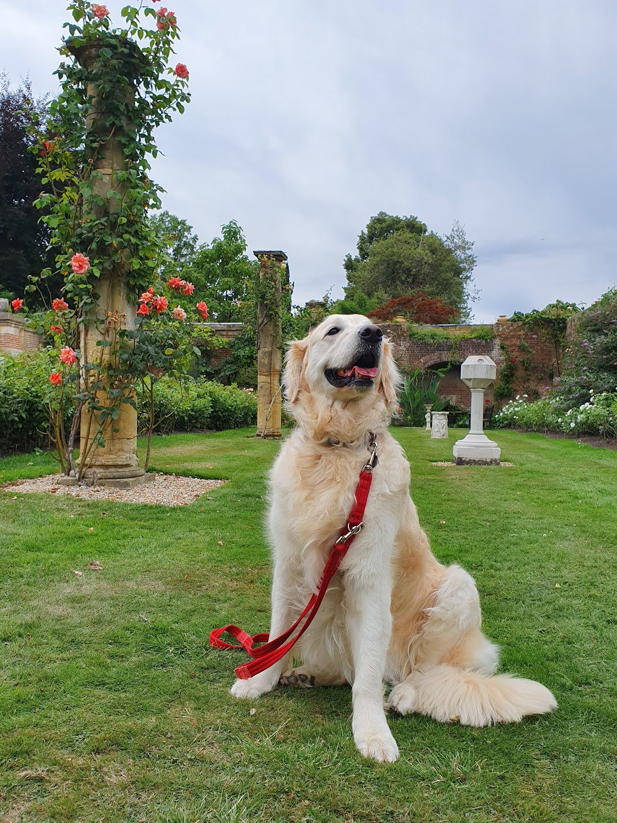 A rather regal Polly at Hever Castle!