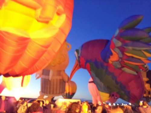 International Balloon Fiesta 2