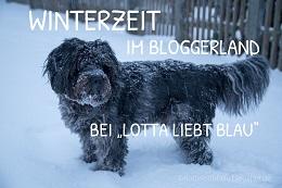 http://flottelottablau.blogspot.de/2016/01/winterzeit.html