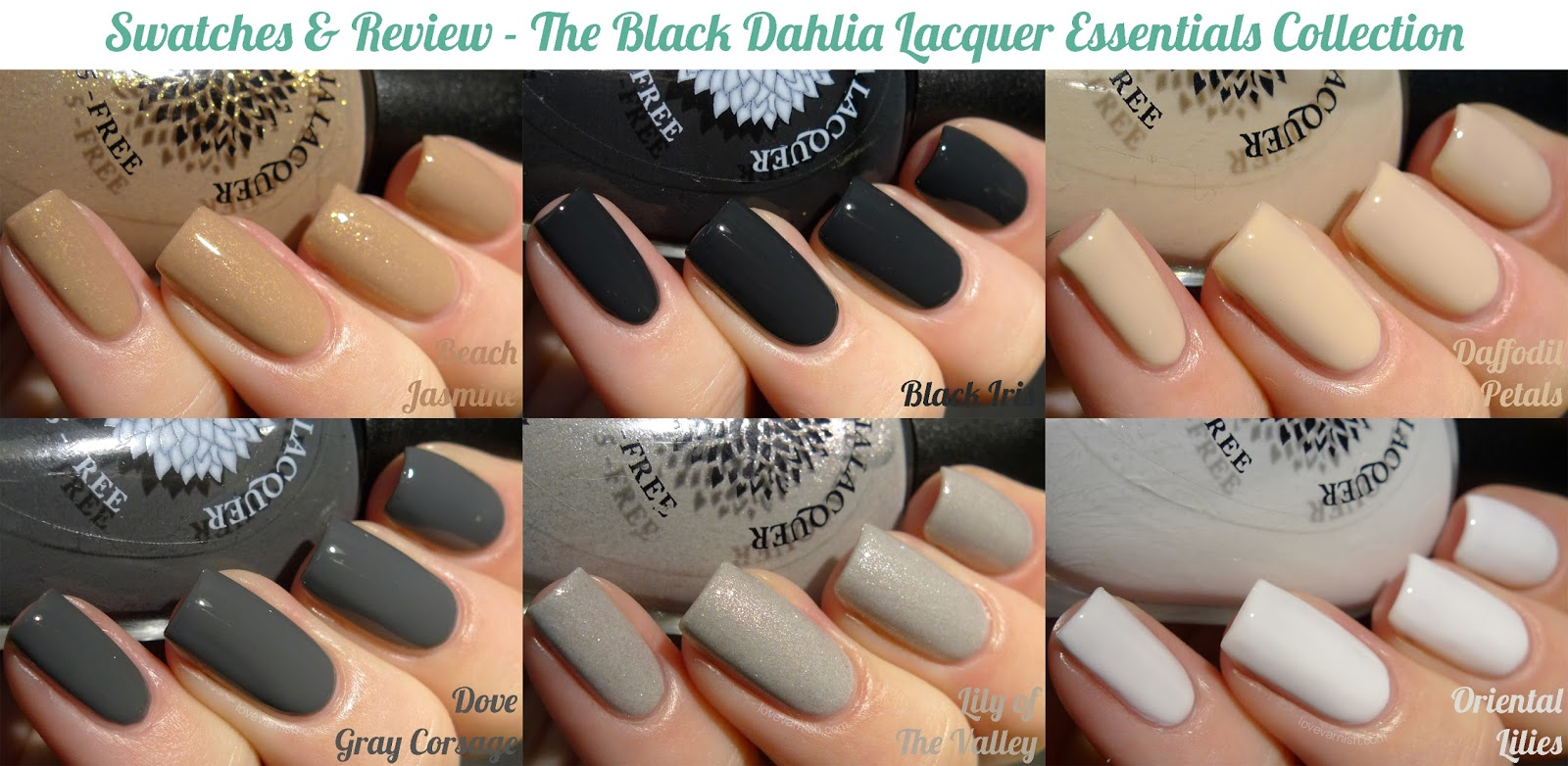 Black Dahlia Lacquer Essentials collection collage