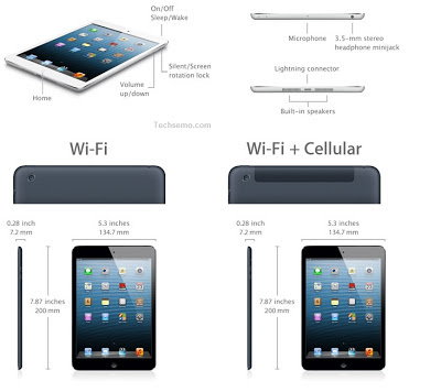 Size and Dimension of iPad Mini
