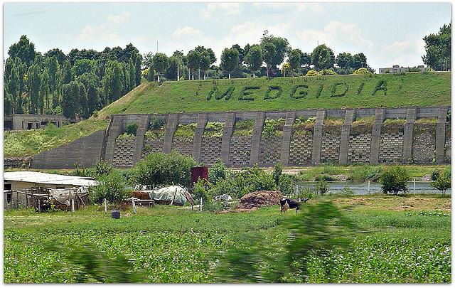 Cristian Teodorescu,Medgidia, miasto u kresu, Okres ochronny na czarownice, Carmaniola