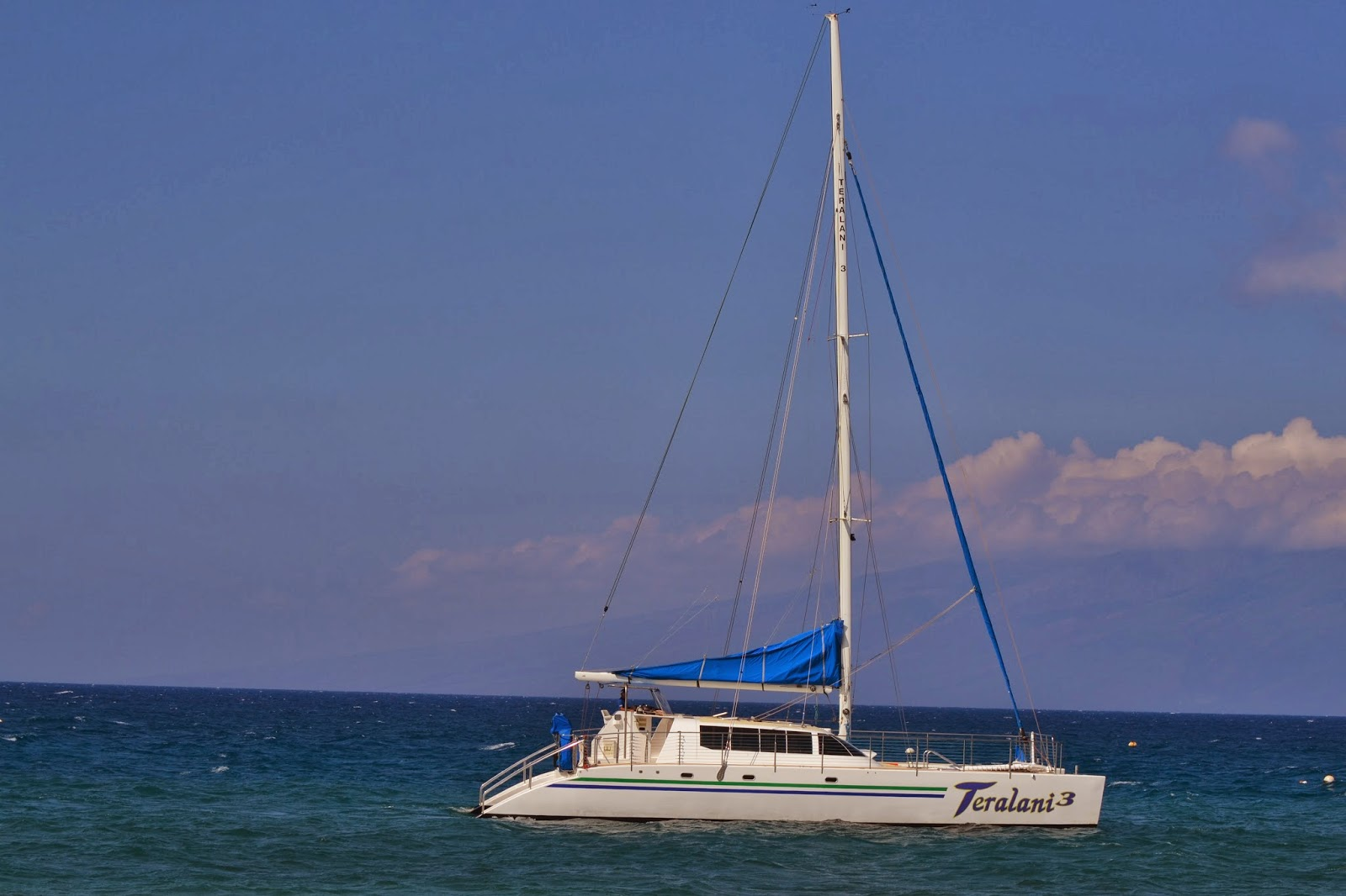 Whale Watch Cruise - Kaanapali | Expedia