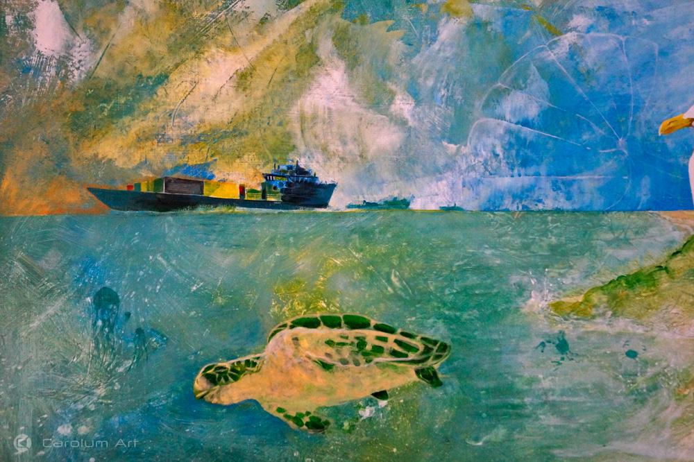 tortuga-barcos-medusas