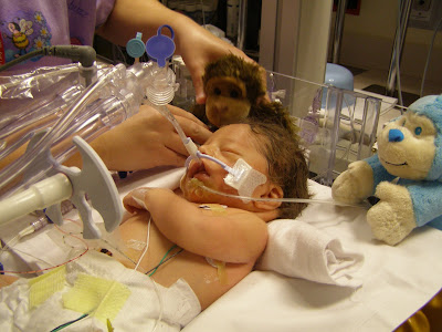Preemie Awareness & RSV Protection