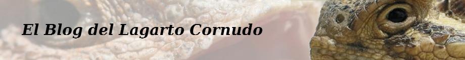 Lagarto cornudo, camaleon, sapo cornudo