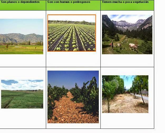5to b lic jessica mendoza julio 2014 for Cuales son las caracteristicas del suelo