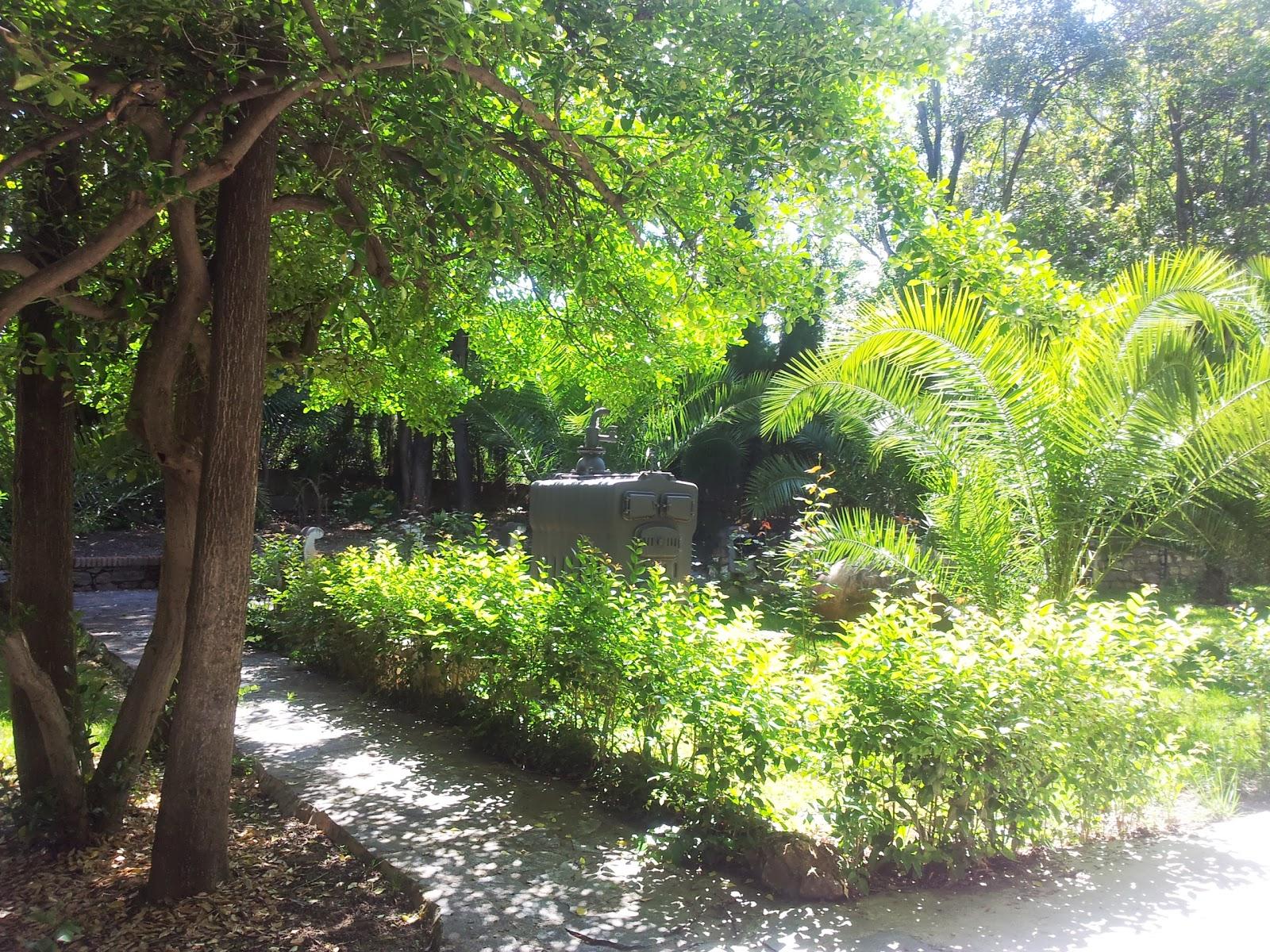 Viveros brujita Viveros y jardines