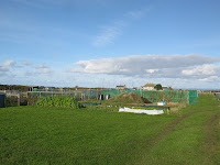 St Ives Cornwall - Allotment With A Sea View