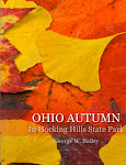 Ohio Autumn - In Hocking Hills State Park