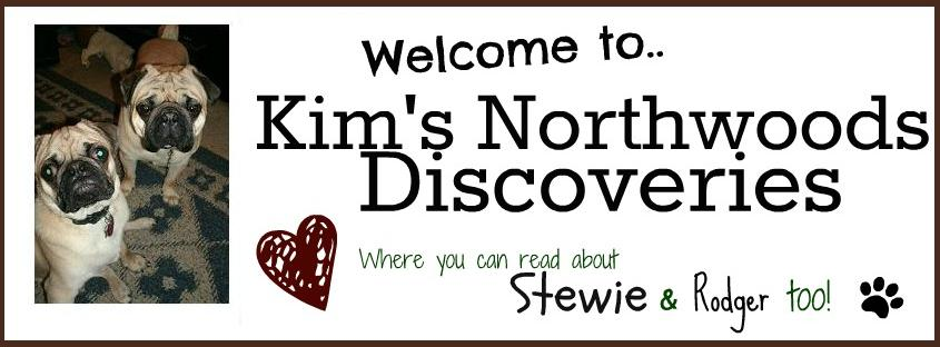 Kim's Northwoods Discoveries