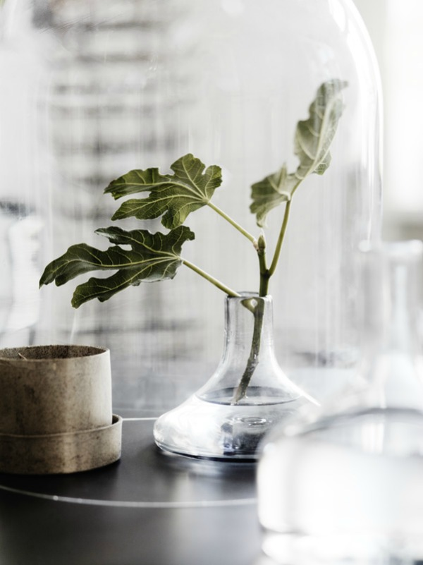 Hege in France Tuesday Tips photo Lotta Agaton
