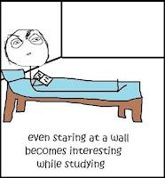 provimet dhe bezdia