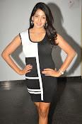 Pavani Reddy Glamorosu Photo shoot-thumbnail-20