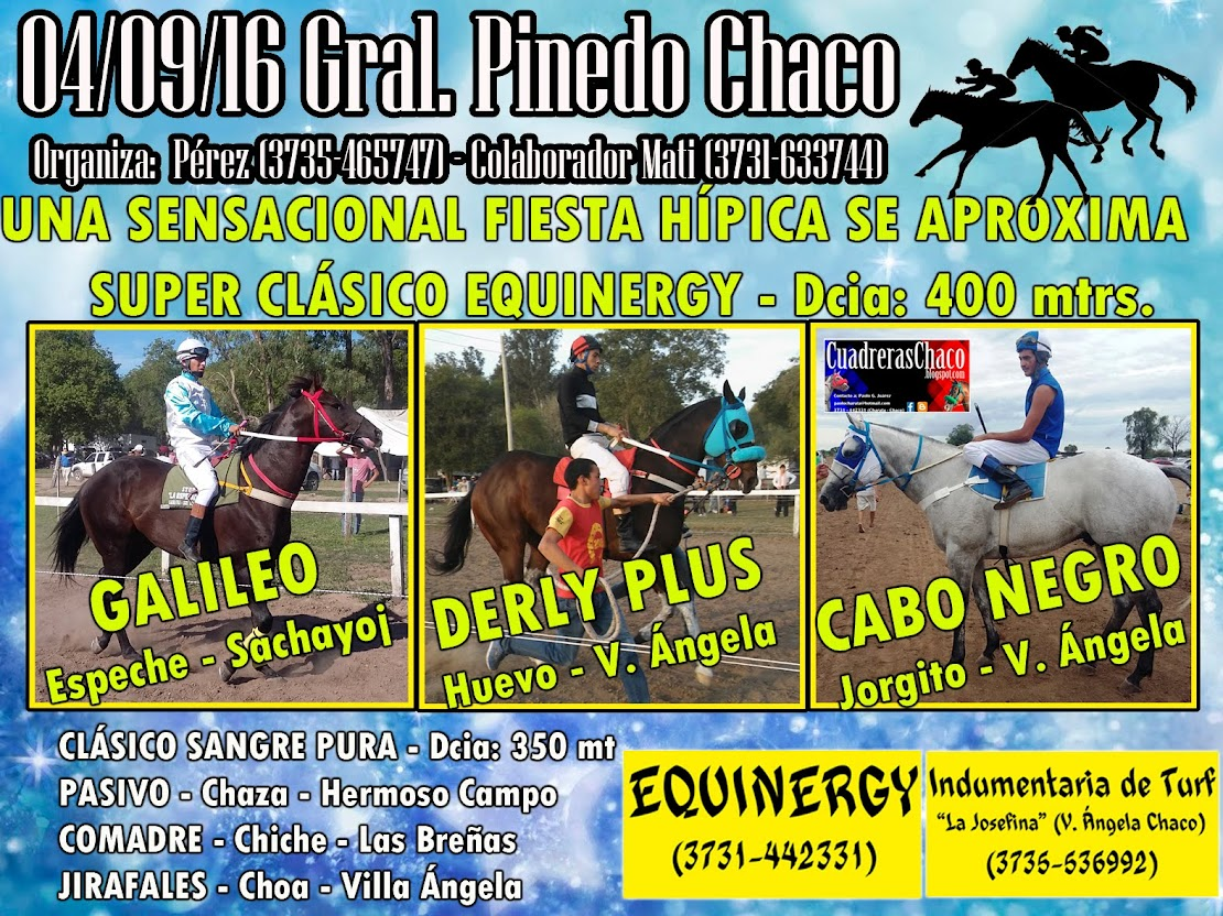 PINEDO 4-9-
