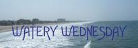Watery Wednesday