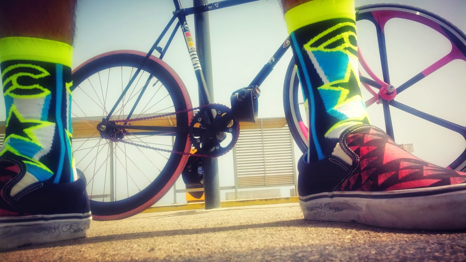 Cinelli x Ana Benaroya Star Socks