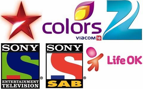 Top 10 Indian Reality TV Shows in 2013 , leaked india show rank