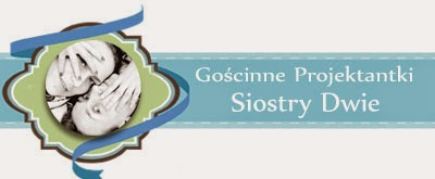 http://blogprzyda-sie.blogspot.com/2014/11/goscie-listopada-siostrydwie.html