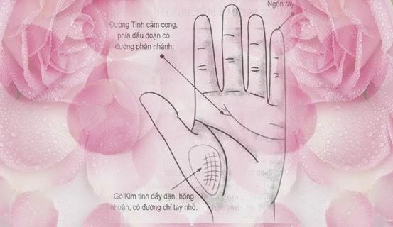 Tướng tay ngón tay út dài và thẳng